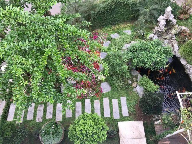 biệt thự đơn lập vườn mai