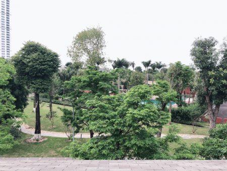 biệt thự mimosa ecopark