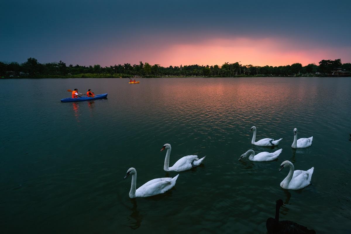 công viên hồ thiên nga ecopark