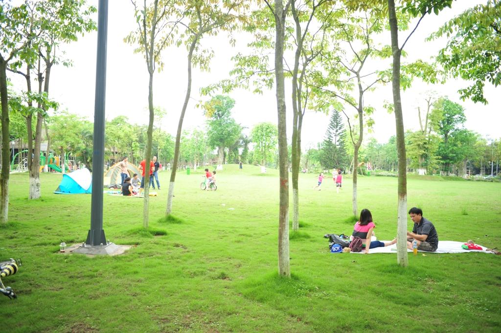 công viên mùa hạ