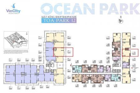 shophouse P12 vinhomes ocean park